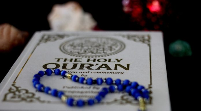 Holy Quran Translation